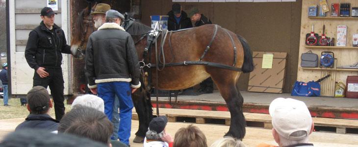 Gölingstorp13_hästkrafter